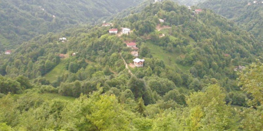 Pazar Şentepe Köyü Resimleri