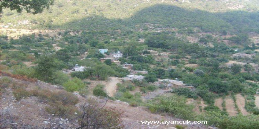 Kızıltepe Arıtepe Köyü Resimleri