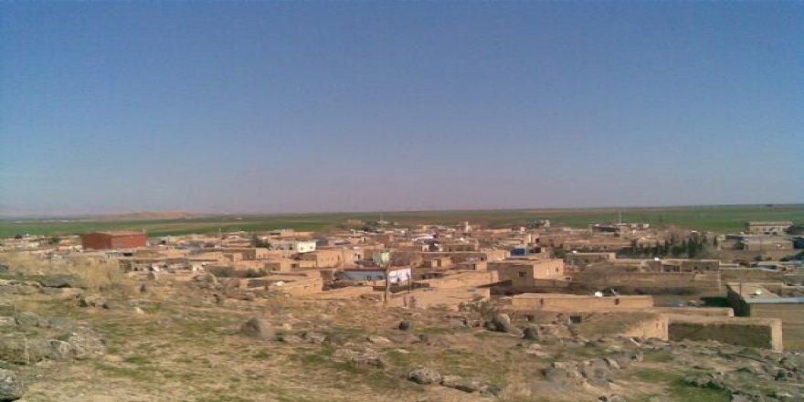 Kızıltepe Başak Köyü Resimleri
