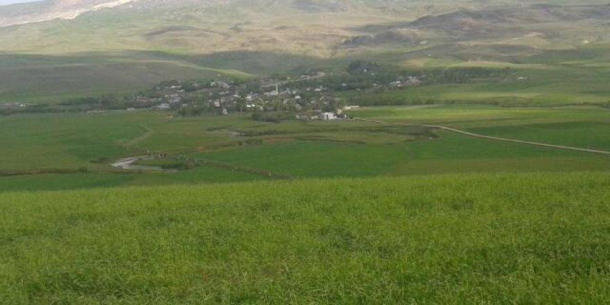 Hınıs Halilçavuş Köyü Resimleri