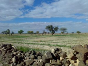 Afyon Emirdağ Eşrefli Köyü Resimleri