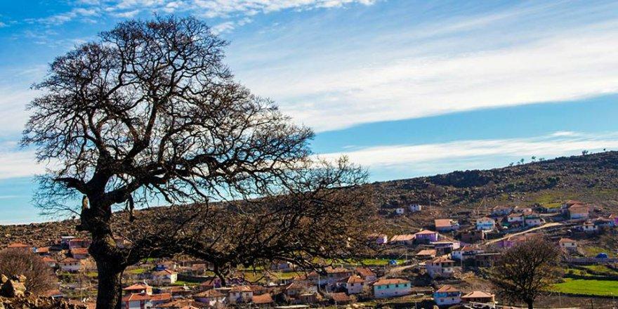 Demirci Sağnıç Köyü Resimleri
