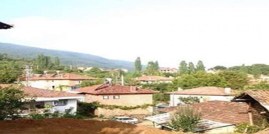 Demirci Söğütçük Köyü Resimleri