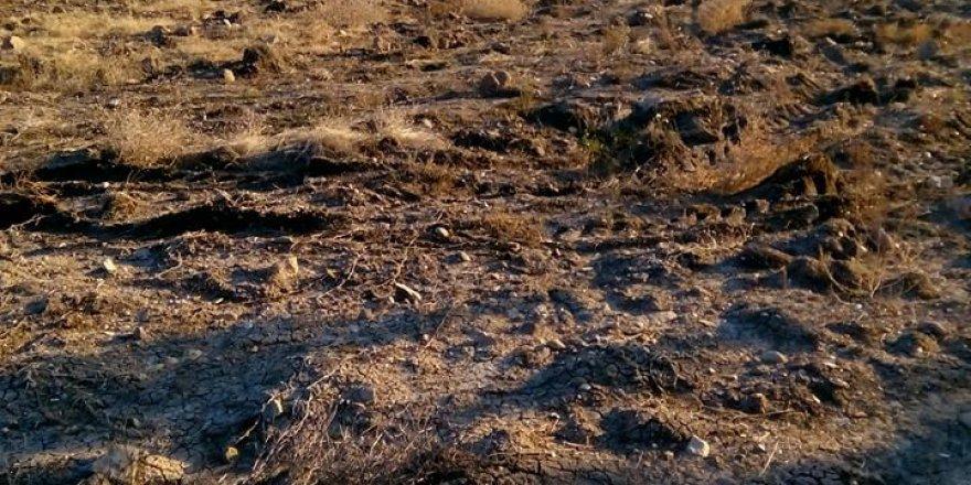 Demirci Taşokçular Köyü Resimleri