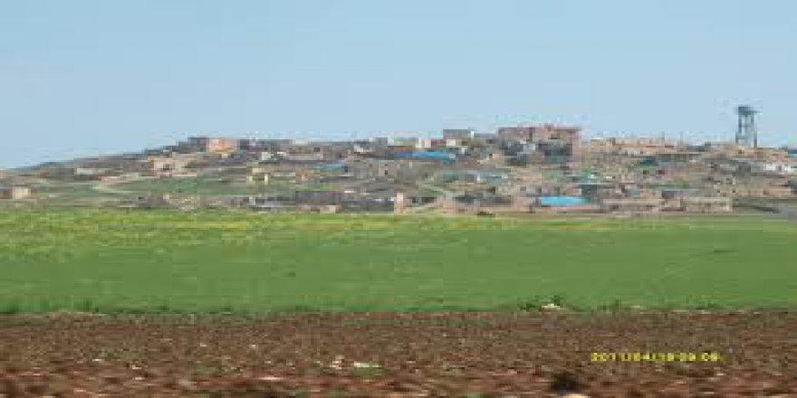 Mazıdağı Şanlı Köyü Resimleri