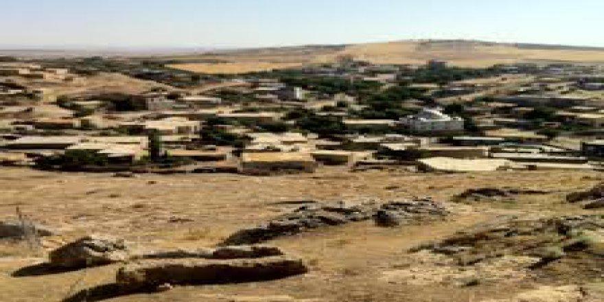 Mazıdağı Şenyuva Köyü Resimleri