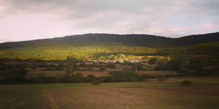 Mazıdağı Tanrıyolu Köyü Resimleri