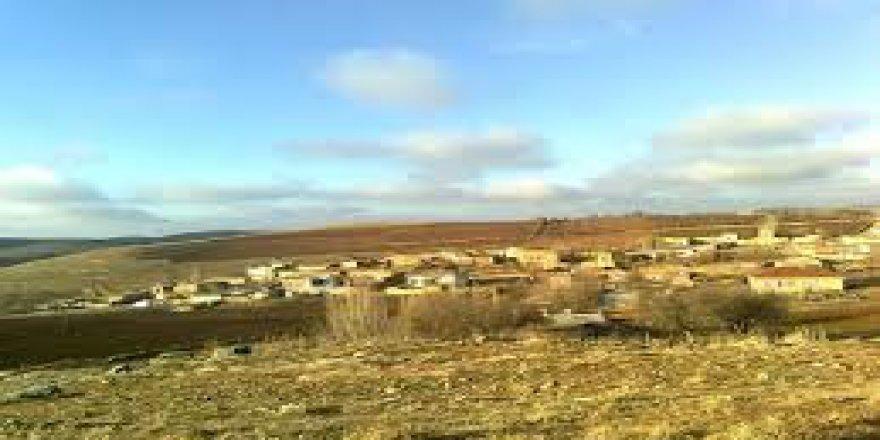 Mazıdağı Tarlacık Köyü Resimleri