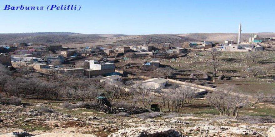 Midyat Pelitli Köyü Resimleri