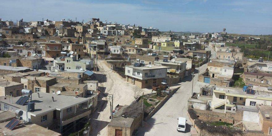 Midyat Söğütlü Köyü Resimleri