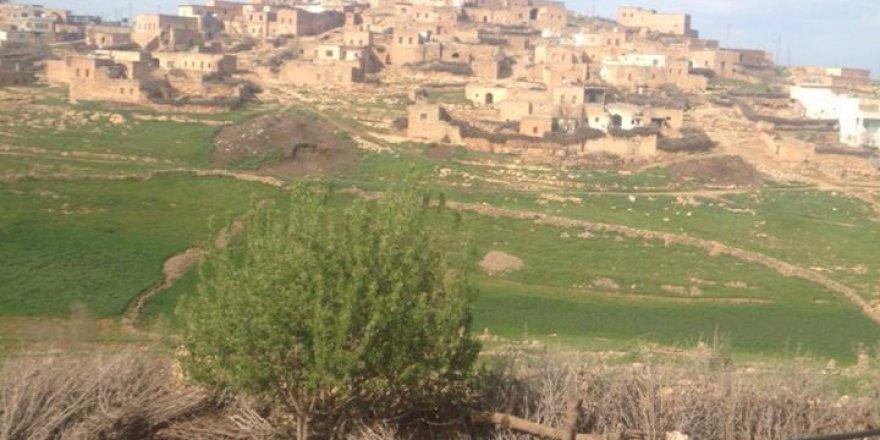 Midyat Üçağıl Köyü Resimleri