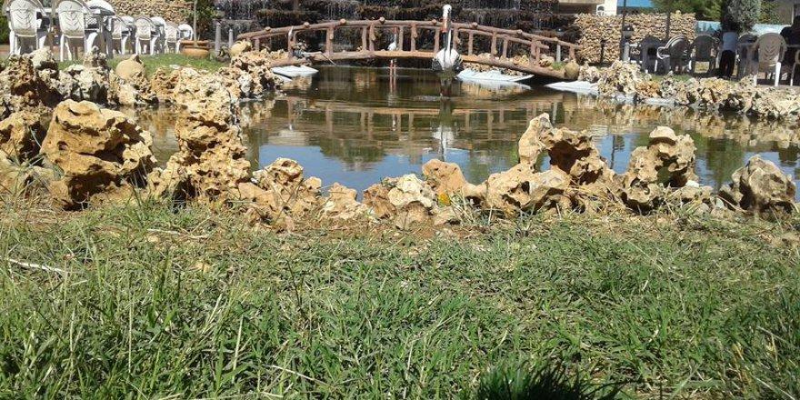 Midyat Ziyaret Köyü Resimleri