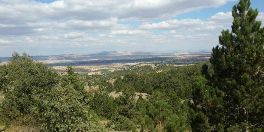 Afyon Sinanpaşa Tazlar Köyü Resimleri