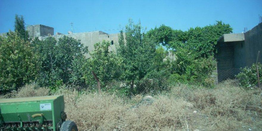 Nusaybin Odabaşı Köyü Resimleri