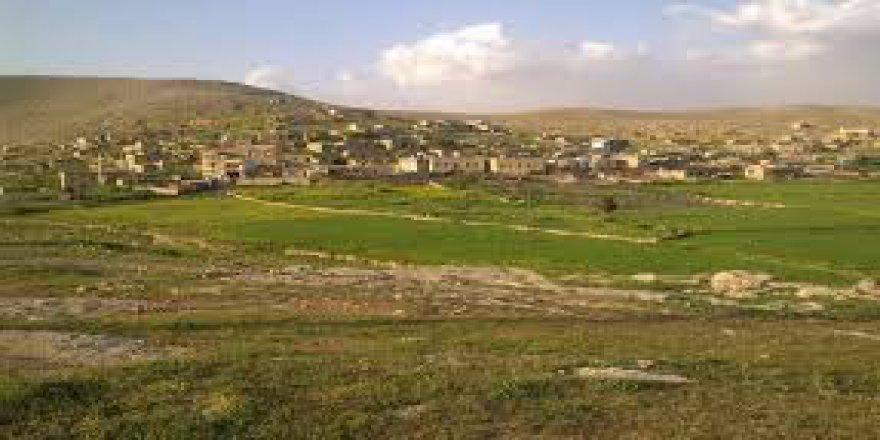 Nusaybin Yandere Köyü Resimleri