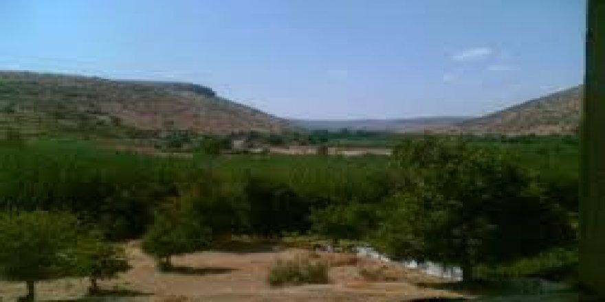 Savur Köprülü Köyü Resimleri
