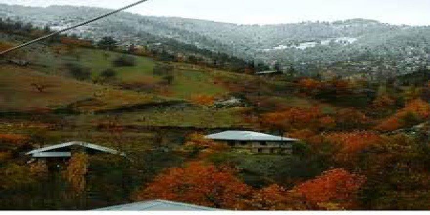 Savur Ormancık Köyü Resimleri