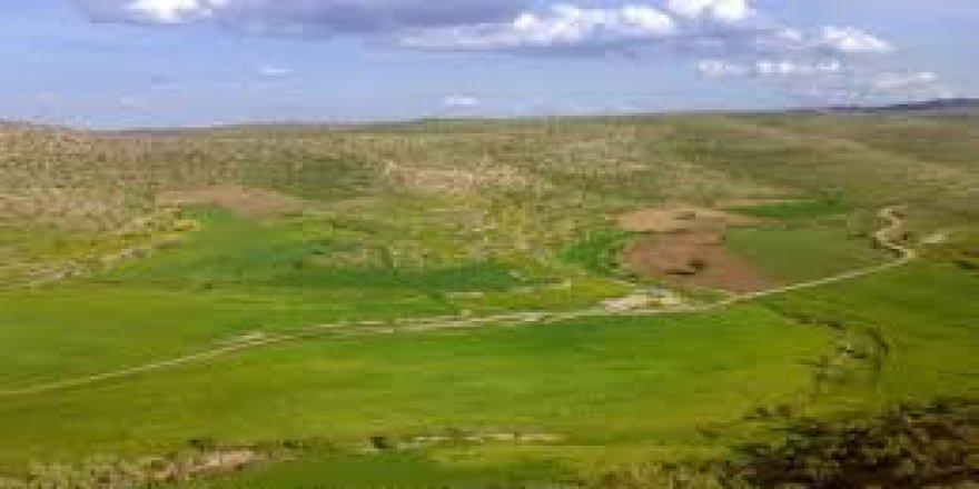 Savur Sancaklı Köyü Resimleri