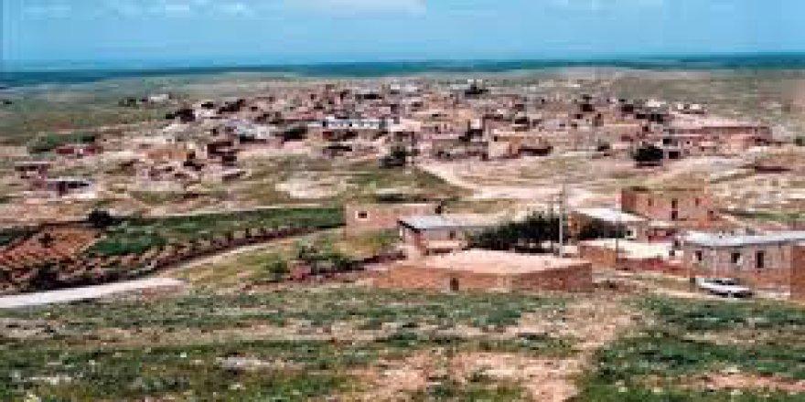 Savur Şenocak Köyü Resimleri