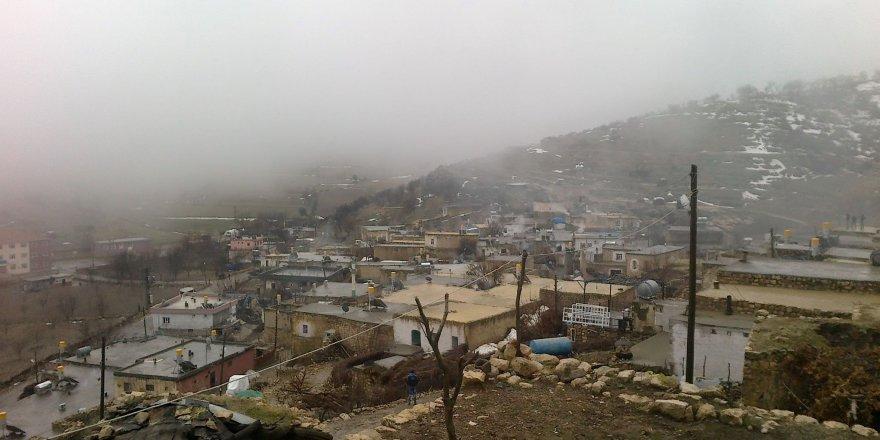 Savur Tokluca Köyü Resimleri