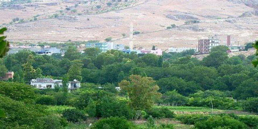 Yeşilli Kütüklü Köyü Resimleri