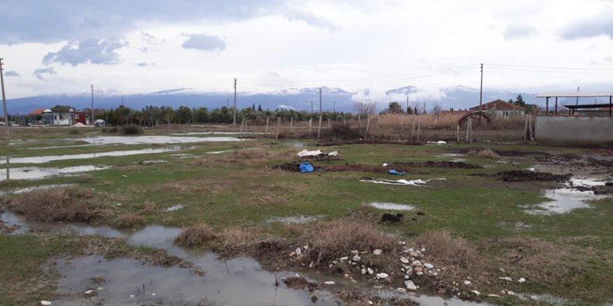Salihli Pazarköy Köyü Resimleri