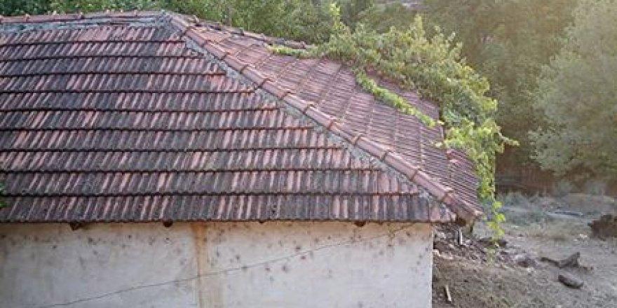 Salihli Yağmurlar Köyü Resimleri