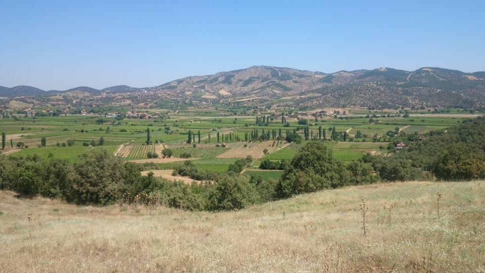 Sarıgöl Dindarlı Köyü Resimleri 1
