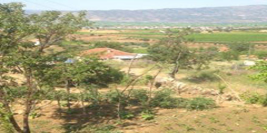 Sarıgöl Selimiye Köyü Resimleri