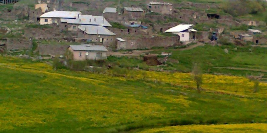 Tortum Çakıllı Köyü Resimleri