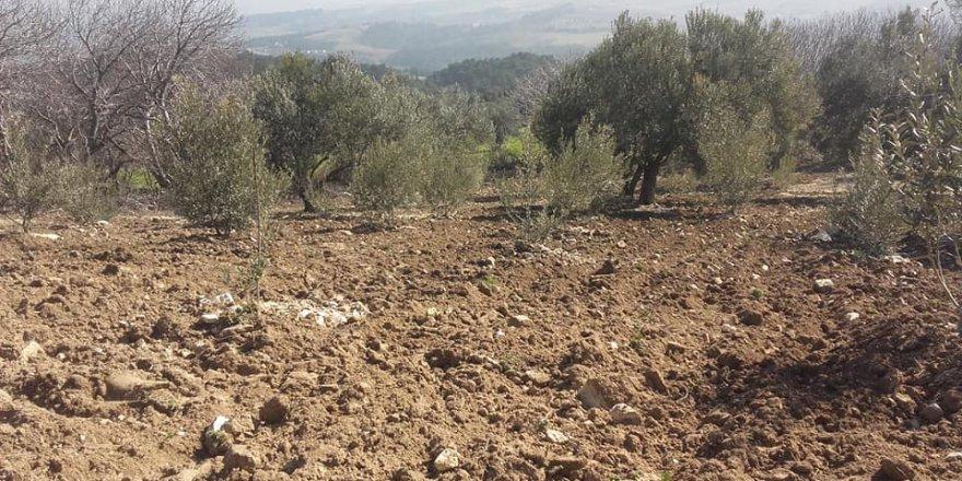 Soma Uruzlar Köyü Resimleri