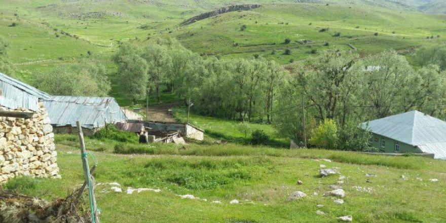 Kelkit  Gürleyik  Köyü Resimleri