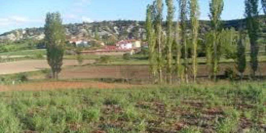 Göynük Kuyupınar Köyü Resimleri