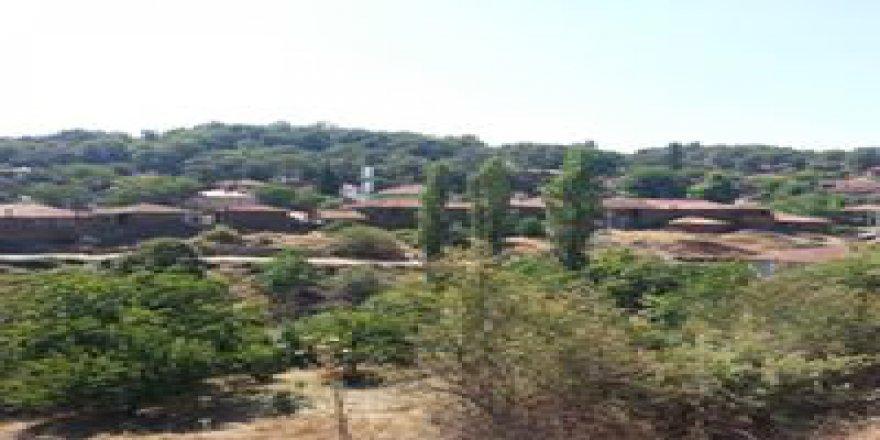 Turgutlu Dağyeniköy Köyü Resimleri