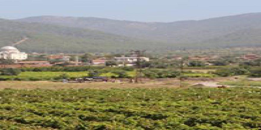 Tugutlu Musacalı Köyü Resimleri