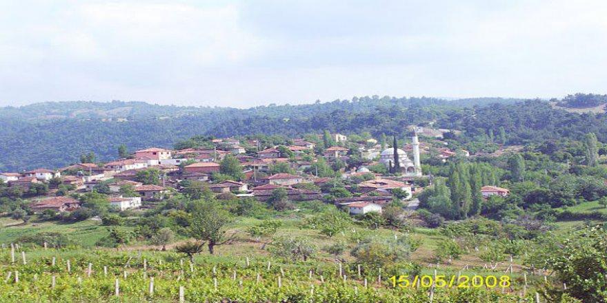 Turgutlu Sivrice Köyü Resimleri