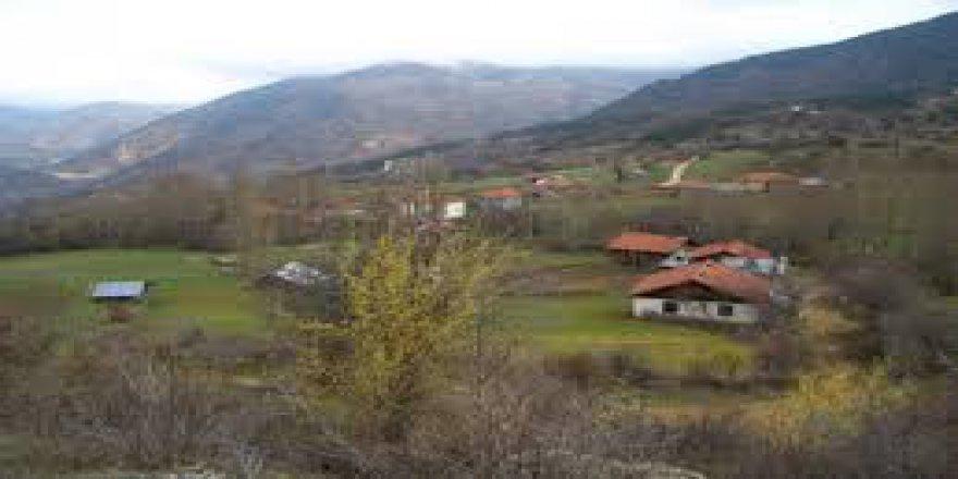 Seben Dereboyu Köyü Resimleri