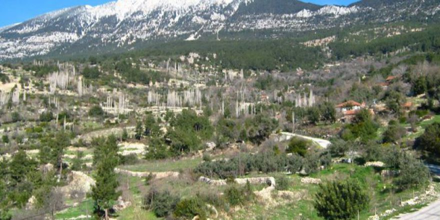 Antalya Kaş Gürsu Köyü Resimleri