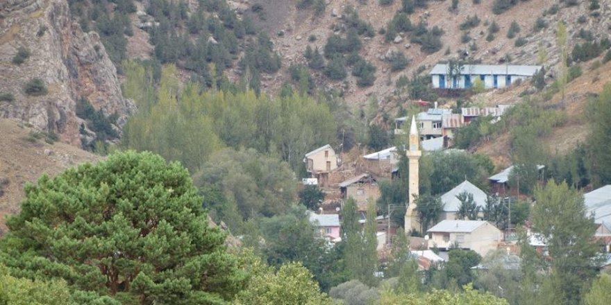 Şiran Gökçeler Köyü Resimleri
