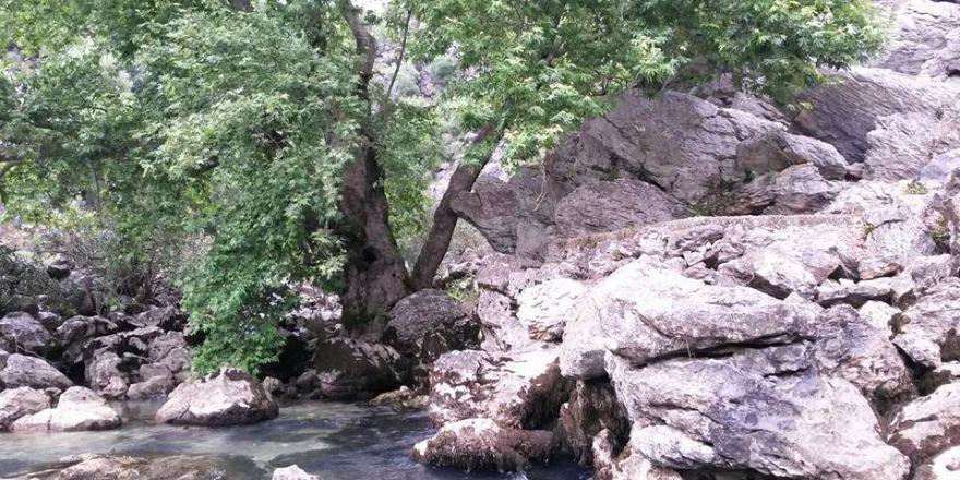 Antalya Manavgat Değirmenözü Köyü Resimleri