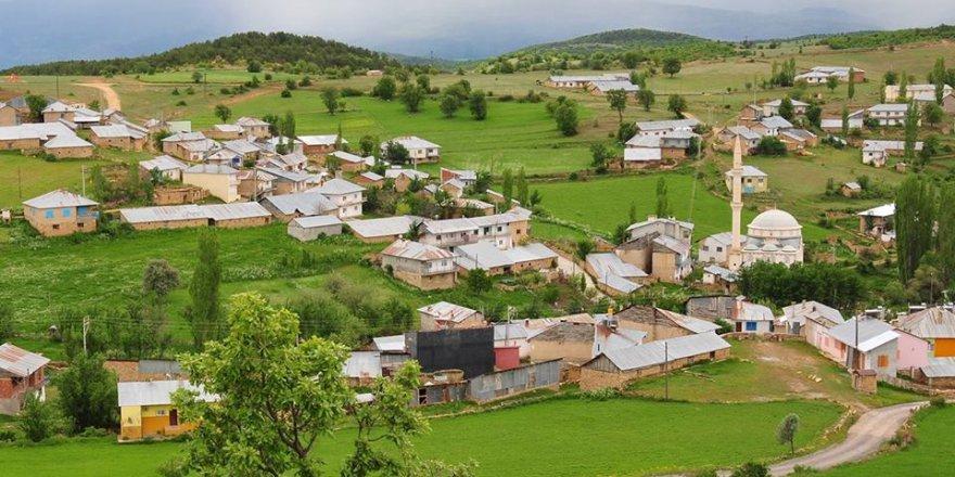 Şiran İncedere Köyü Resimleri