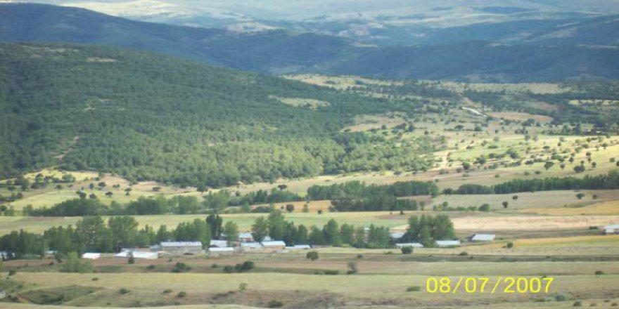 Şiran Kavaklıdere Köyü Resimleri