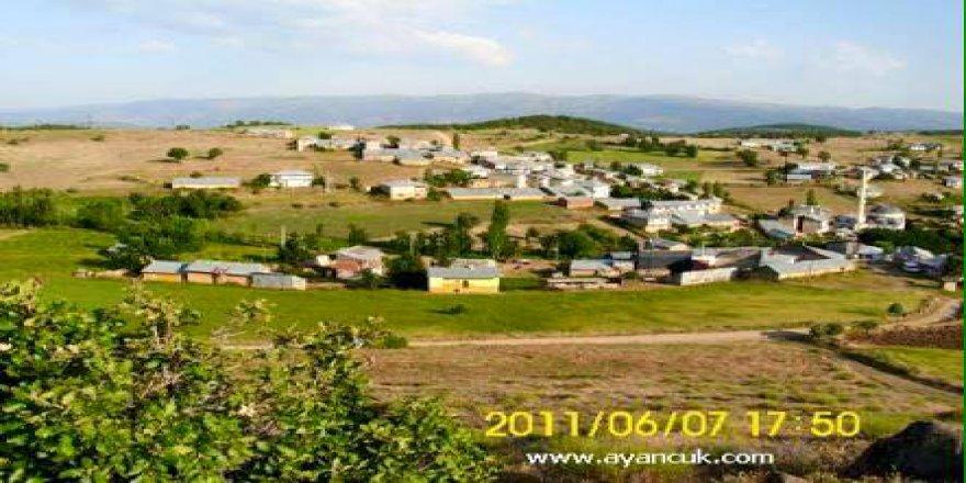 Şiran Koyunbaba Köyü Resimleri