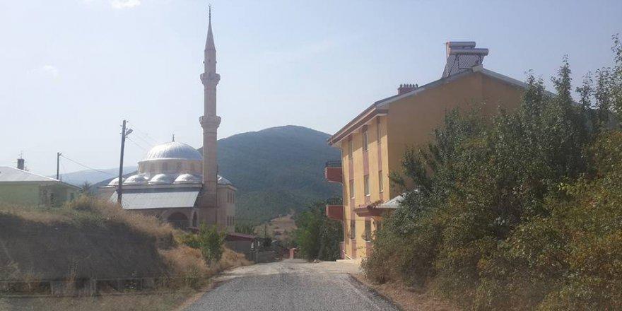 Şiran Kozağaç Köyü Resimleri