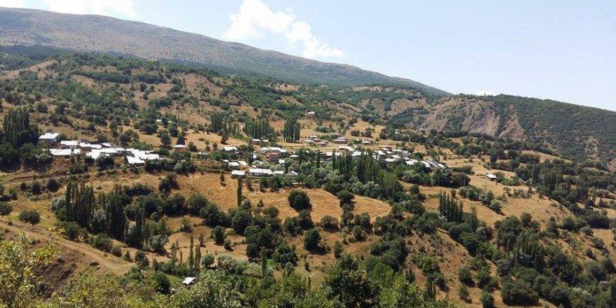 Şiran Pelitli Köyü Resimleri