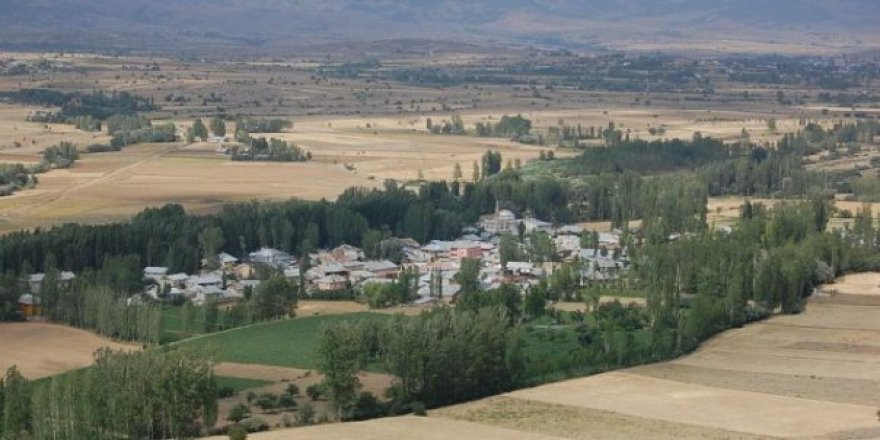 Şiran Sarıca Köyü