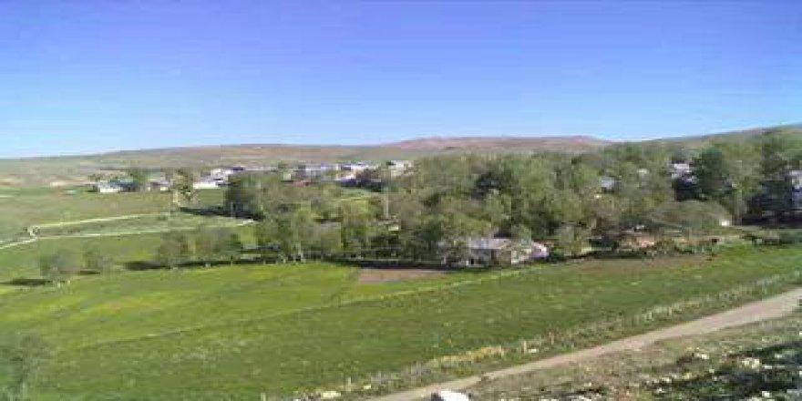 Şiran Yeniköy Köyü Resimleri