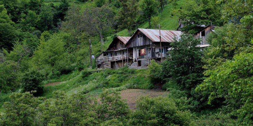 Torul Aksüt Köyü Resimleri