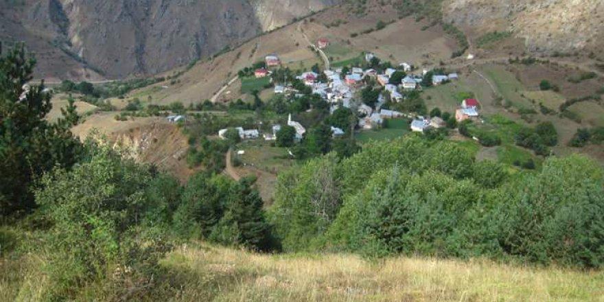 Torul Alınyayla Köyü Resimleri