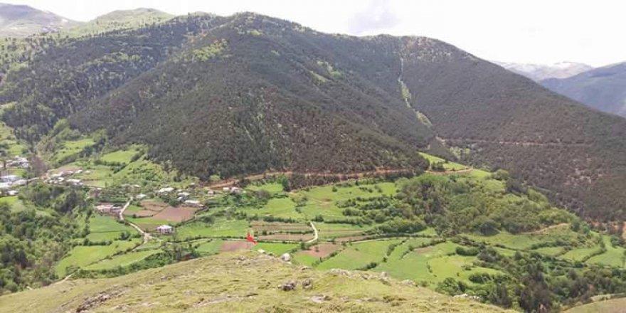 Torul Arpalı Köyü Resimleri